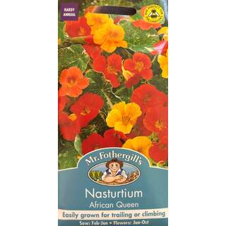 UK/FO-NASTURTIUM (Trailing) African Queen