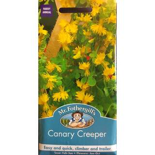 Canary Creeper