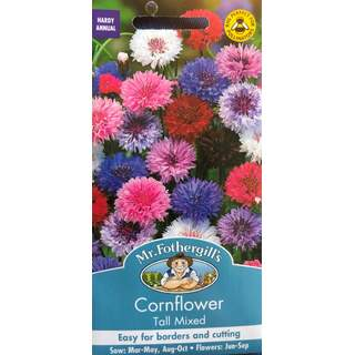 UK/FO-CORNFLOWER Tall Mixed