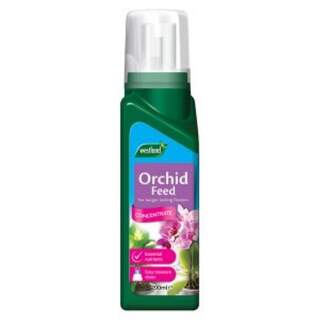 Orchid Feed Concentrate 200ml