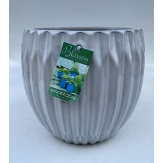 19cm Larsson Egg Pots - White