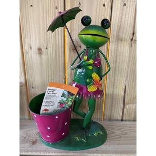 Brolly Frog Pot-Pet