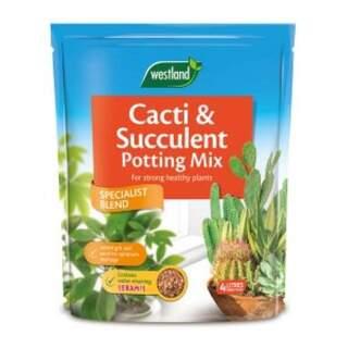 Cacti & Succulent Potting Mix 4L
