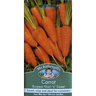 UK/FO-CARROT Burpees Short n Sweet